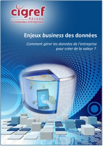 enjeux-business-donnees-CIGREF